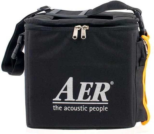 aer cheeky d 200w 1x10 electric guitar amp mooloolaba music australia. Black Bedroom Furniture Sets. Home Design Ideas