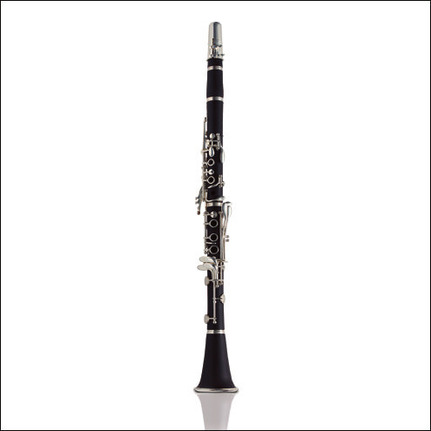 Ashton Cl10 Bb Clarinet Student Model With Case