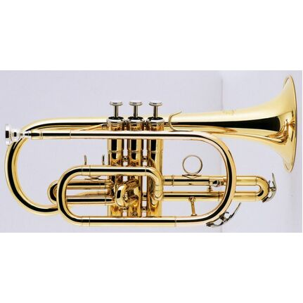 J.Michael CT420 Cornet (Bb) Clear Lacquer Finish
