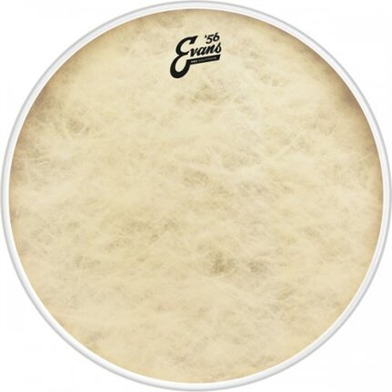 Evans EQ4 Calftone Bass Drum Head, 24 Inch