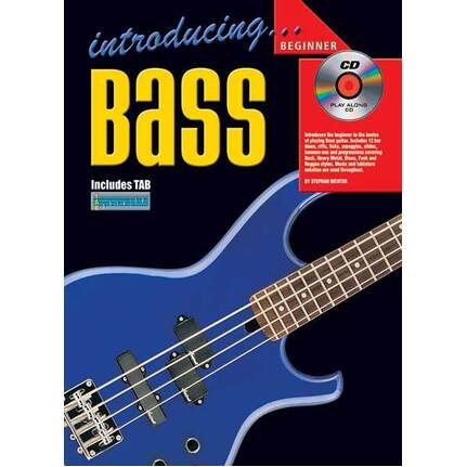 Introducing Bass Guitar Beginner