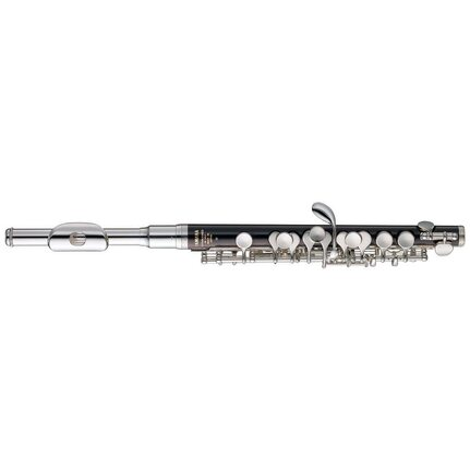 Yamaha Ypc32 Piccolo In Case